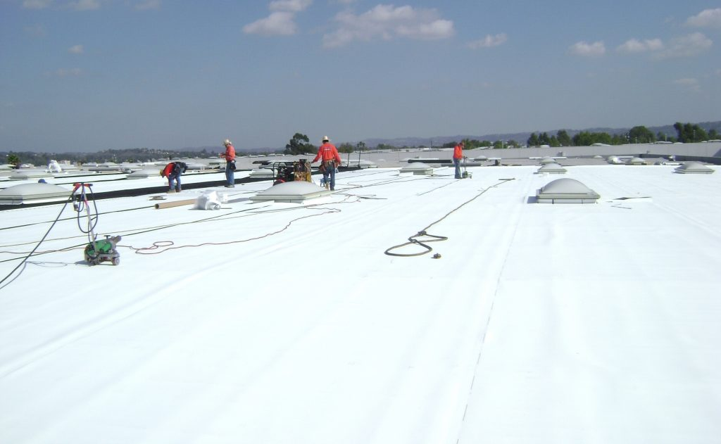 Wildcats Roofing Commercial Roofing Contractors